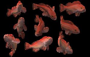 Fish Set 26 by Free-Stock-By-Wayne