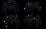 Black Widow Spider Set 02