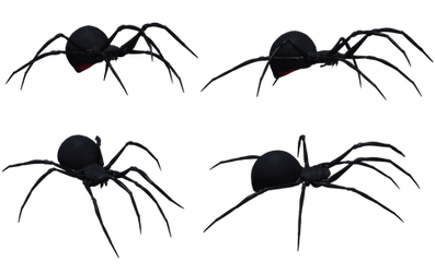 Black Widow Spider Set 03 by Free-Stock-By-Wayne