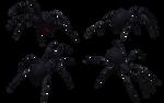 Black Widow Spider Set 04