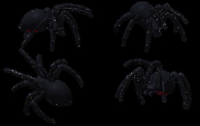 Black Widow Spider Set 06