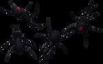 Black Widow Spider Set 08