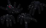 Black Widow Spider Set 09