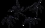 Black Widow Spider Set 12