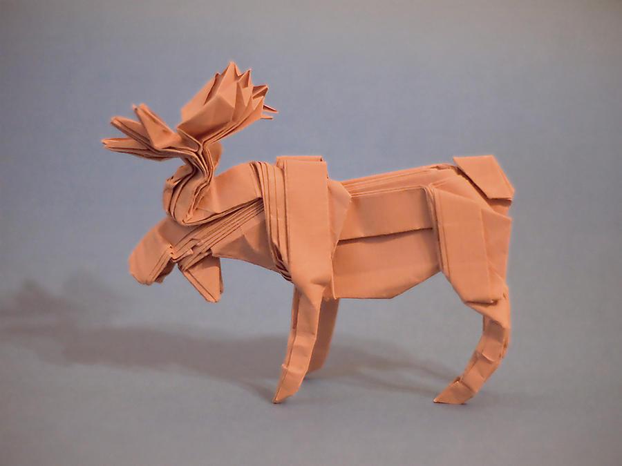 Moose by fireantz83