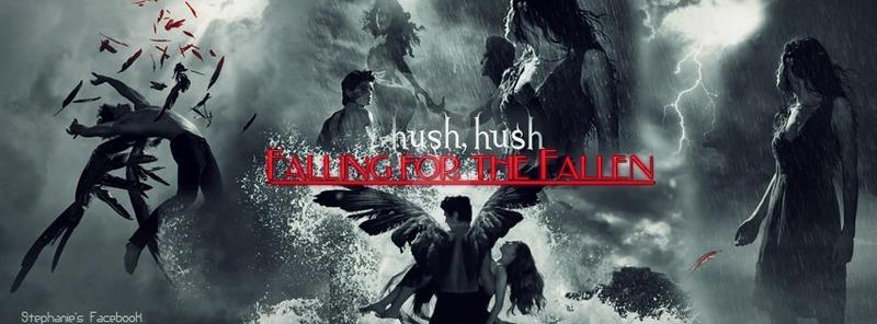 Hush Hush (facebook co...