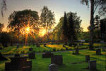 Cemetery in sunset 2