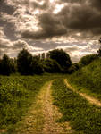 path n grass,stock by needanewname