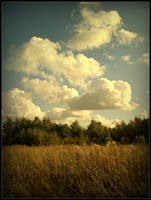 Autumn-ish landscape by needanewname