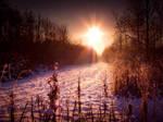 STOCK: Sunset snow scence 3