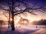 STOCK: Sunset snow scence 5