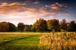 STOCK: Landscape, path, sky.