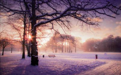 STOCK: Winter sunset 1 by needanewname