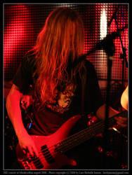 DIE concert 04 by elsenator