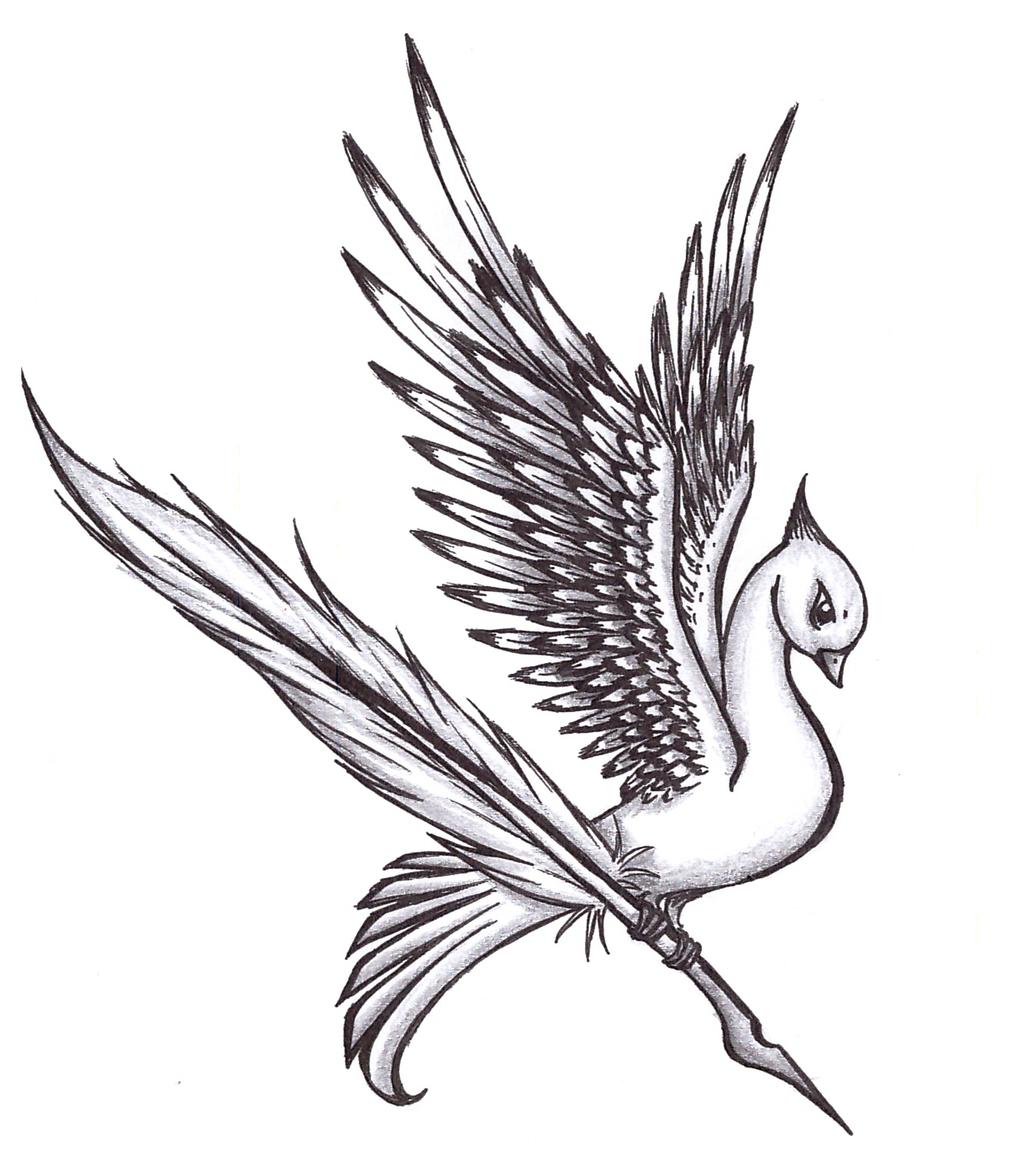 Flying bird drawings in color