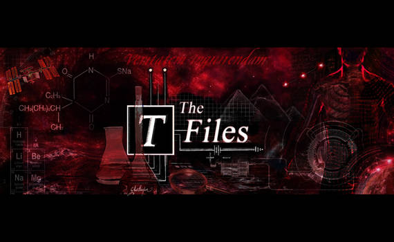 T-Files BANNER red