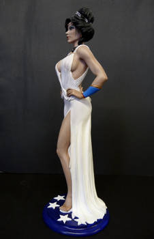 Wonder Woman , evening gown  painted 3