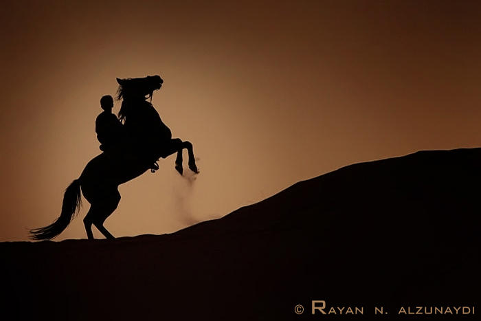 Arabian Horse by rAyAn86