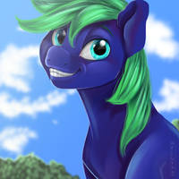 Art Trade w/ PonyGraphics by Aelwyng