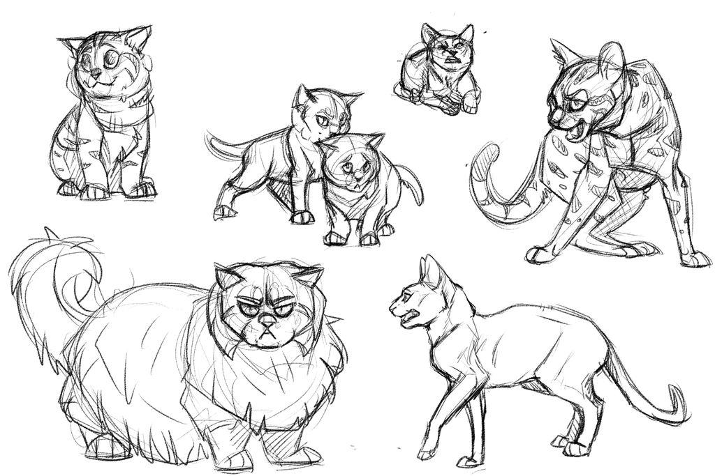 Sketches || Feline Study