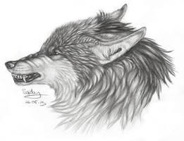 The Mane Wolf Asali by SaidyWolf
