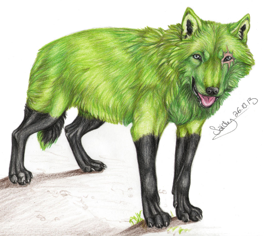 Black And Green Anime Wolf Www Pixshark Com Images