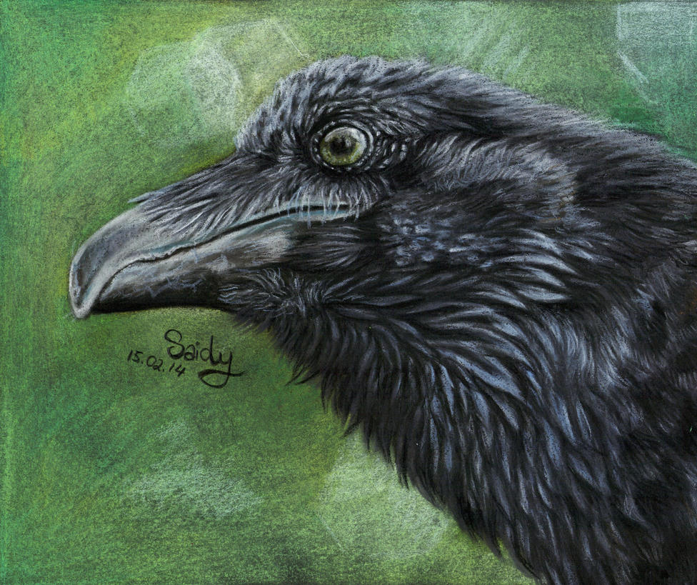 Raven by SaidyWolf