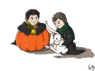 Klaine in Care Of Magical Creatures by Maitia