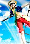 One Piece: Fly Through the Sky