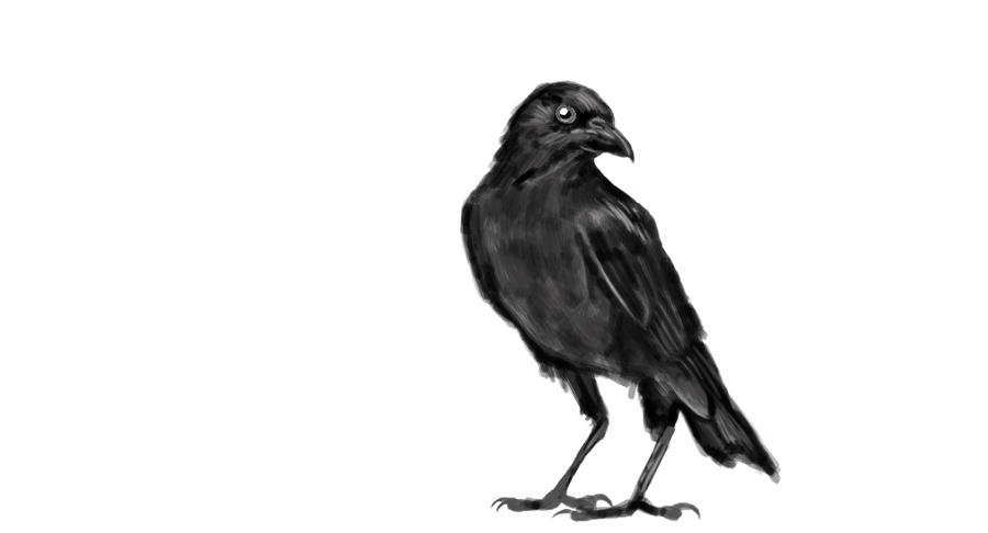 The Crow by KennBaker