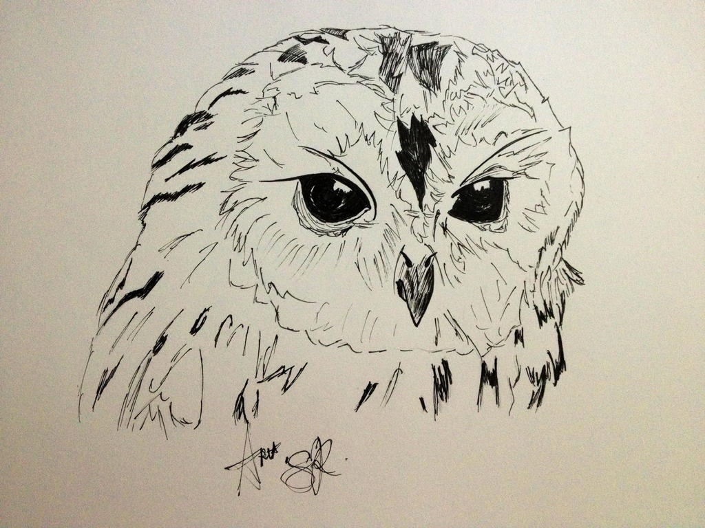 Black Pen Sketches | www.imgkid.com - The Image Kid Has It!