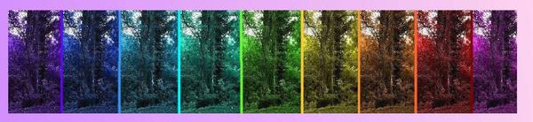 Sing a Rainbow too by flashlife