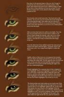 eye tutorial by Copper-Fox