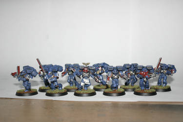 first assault squad, Ultramarines Third company.