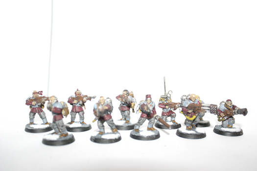 Imperial guard veterans #4