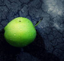 Green apple by Charley17