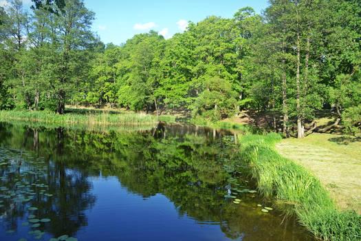 Lithuanian green summer