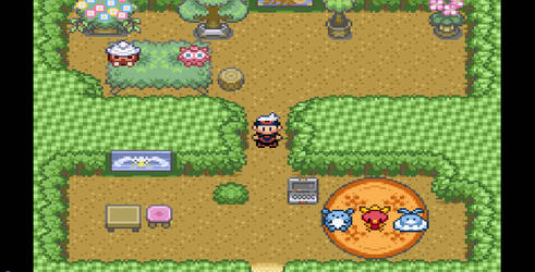 my secret base in pokemon ruby by Mrozius