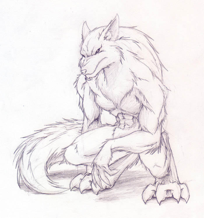 Wolf crouch by Fox-Dev