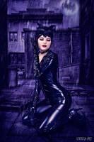 Ready for kitty, Gotham City? by FaerieBlossom