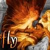 Dead Icarus - Fly by EuTytoAlba