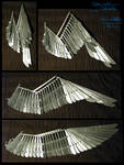 1/3rd-scale Folding Wing Prototype +VIDEO
