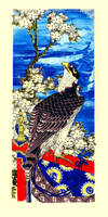 Falcon with Cherry Blooms