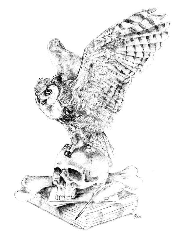 Minerva's Owl by venatorfend
