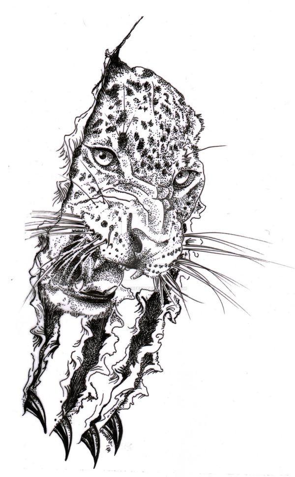 Leopard (Panthera pardus) by venatorfend