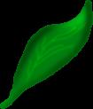 Proud Leaf Scrap by xsherbearx
