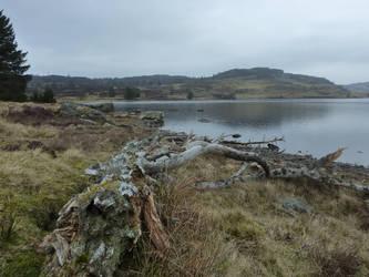 Loch Ordie by regansart
