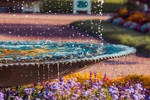 Colorful Fountain In The Morning 1