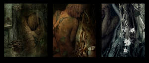 Emotions series. by trinket