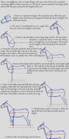 Beginners Way to Horse Drawing